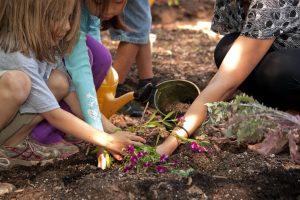 Οι πράσινες σχολικές αυλές προσφέρουν πολλά στη σωματική και ψυχική υγεία των παιδιών και των κοινοτήτων