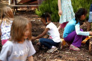 Μελέτη δείχνει πως μια ώρα μάθησης στη φύση κάθε εβδομάδα βελτιώνει την ευεξία των παιδιών και αυξάνει την εργασιακή ικανοποίηση των εκπαιδευτικών