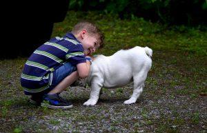 Στρες στους γονείς παιδιών που βρίσκονται στο φάσμα του αυτισμού – τα κατοικίδια μπορεί να βοηθήσουν